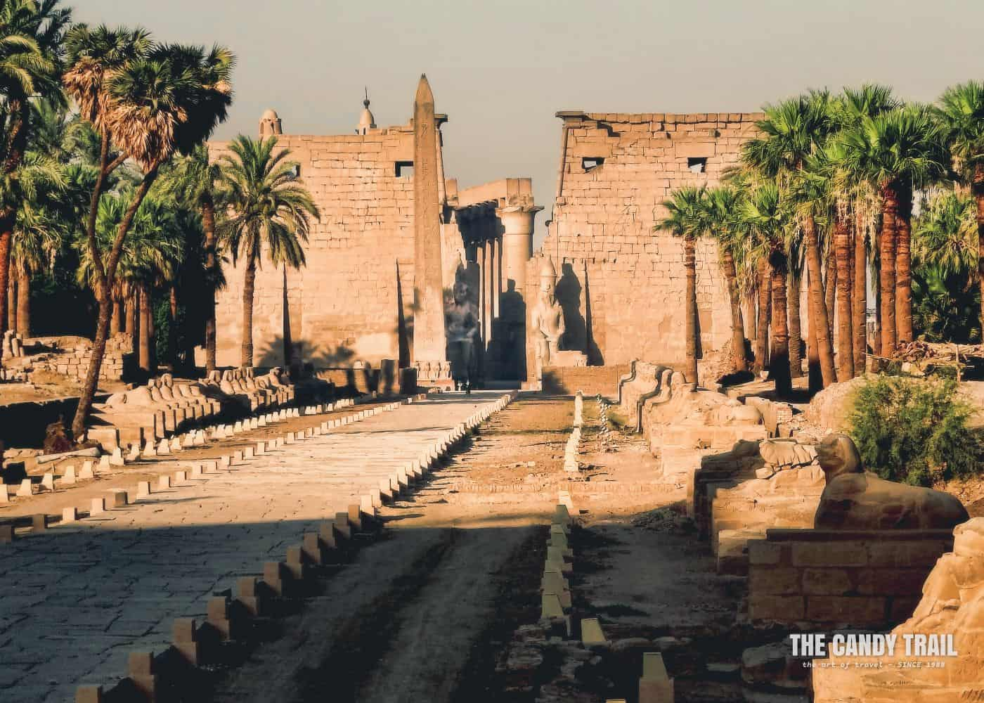 Luxor Temple Avenue Of Sphinxes Egypt
