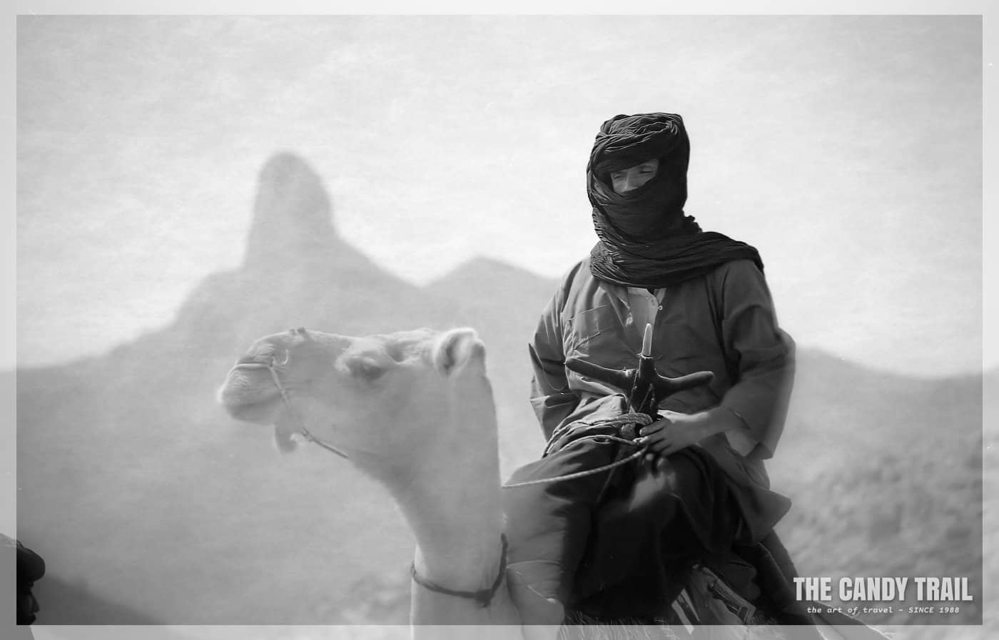 tuareg-on-camel-hoggar-mountains-sahara