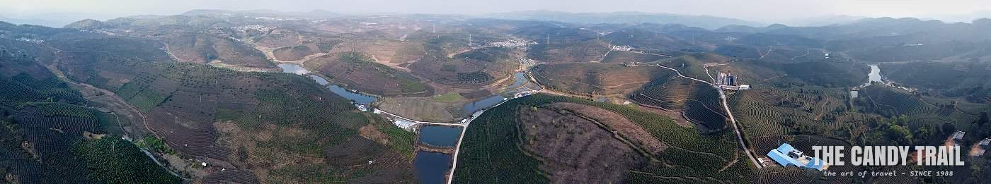 drone panorama of tea plantations of xishuangbanna