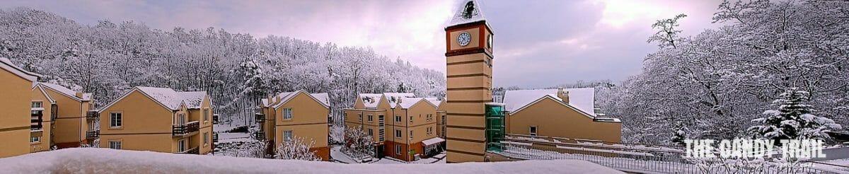 snowy seoul english village korea