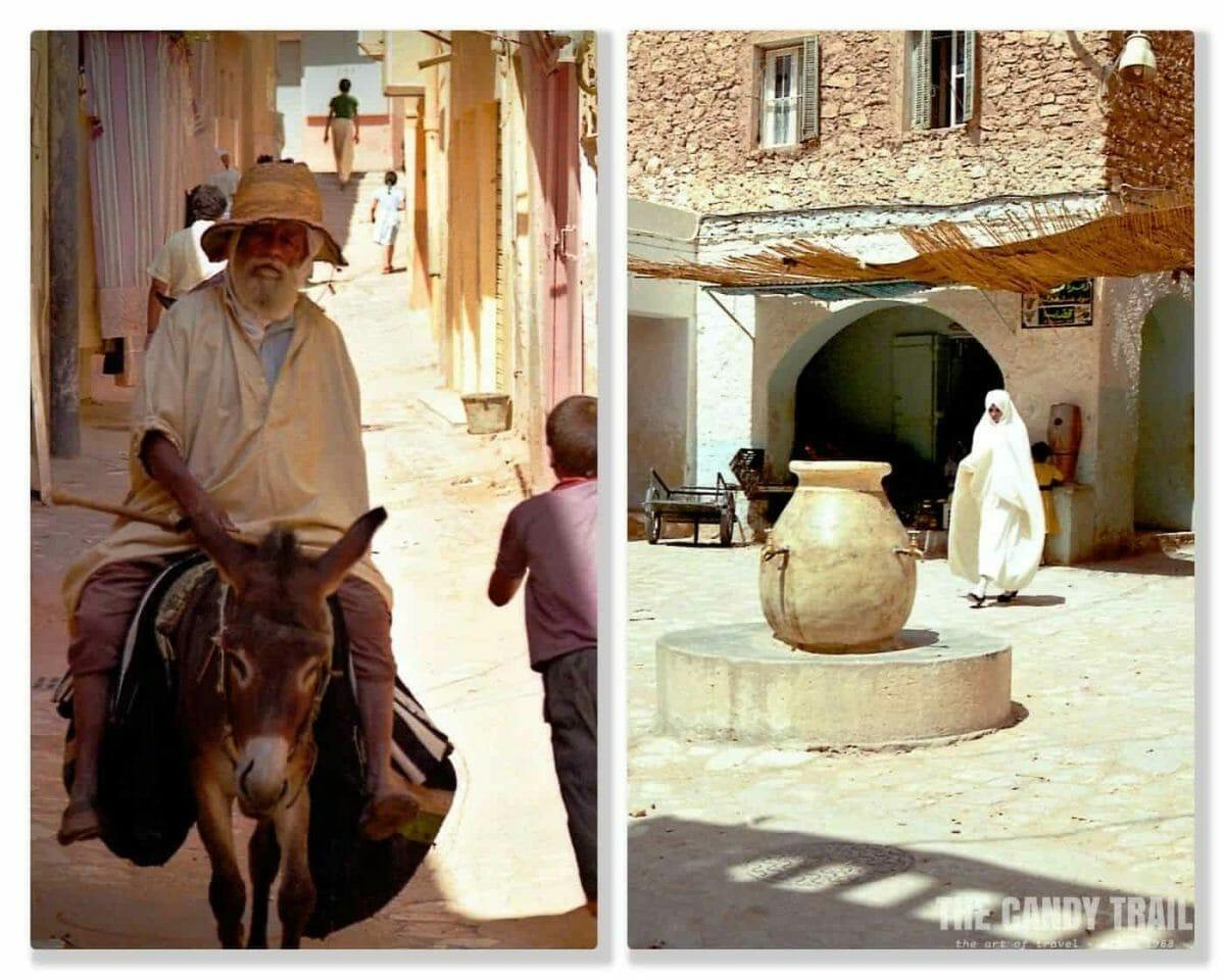 donkey in backstreets of ghardaia m'zab valley algeria